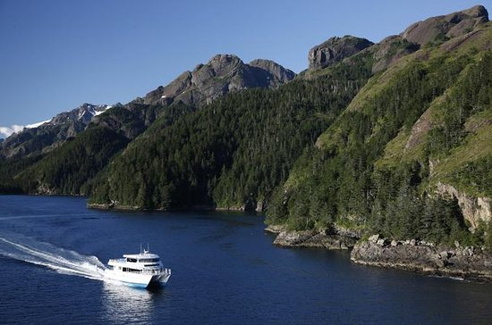 Resurrection Bay Cruise with Fox Island