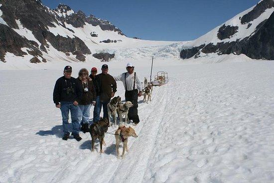 Tour in elicottero di Juneau e