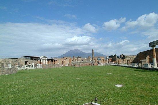 Excursión de medio día a Pompeya desde...