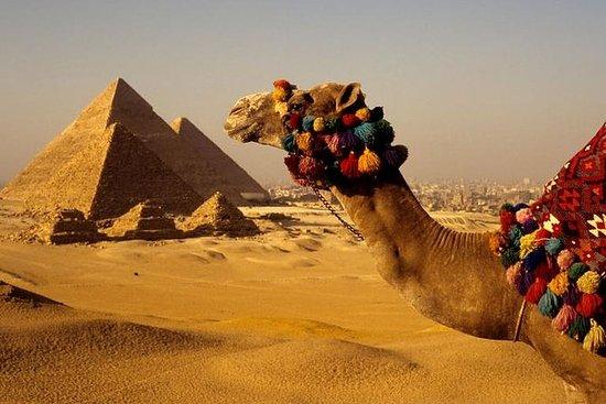 Privat guidet tur til Giza-pyramidene...