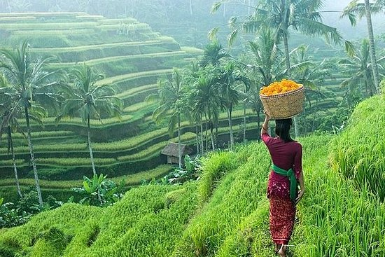 Private Half-Day Ubud Art and Culture...