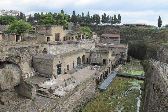 Half Day Morning Tour of Herculaneum...