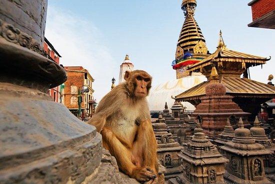 Kathmandu City Tour | Sightseeing Day...