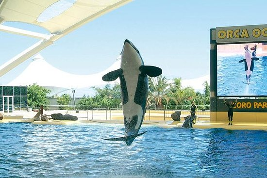 Loro Park und Siam Park - Twin-Ticket ...
