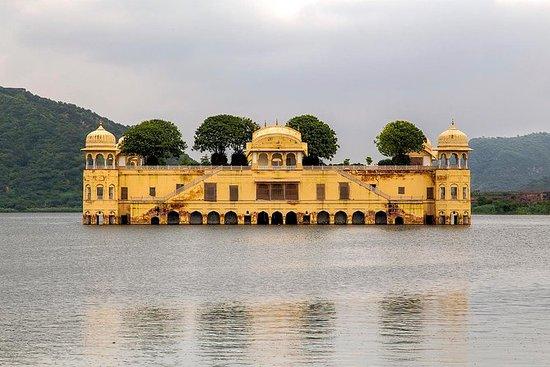 Tour particular de Jaipur com um...