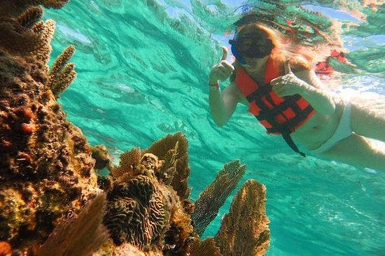 Full-Day Snorkeling Adventure from...