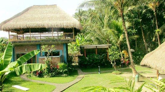 Bali Life Studio