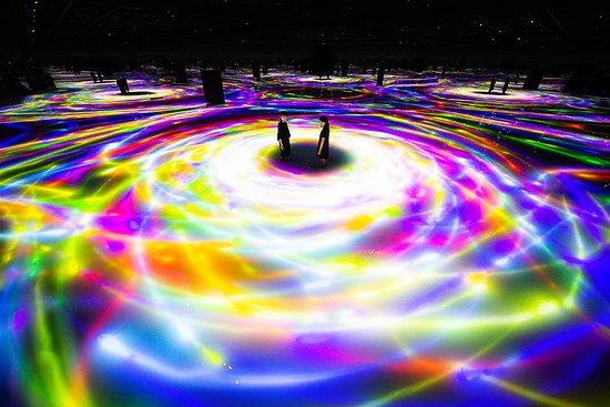 江東区, 東京都, 「人と共に踊る鯉によって描かれる水面のドローイング - Infinity」が秋の花々へ変化。