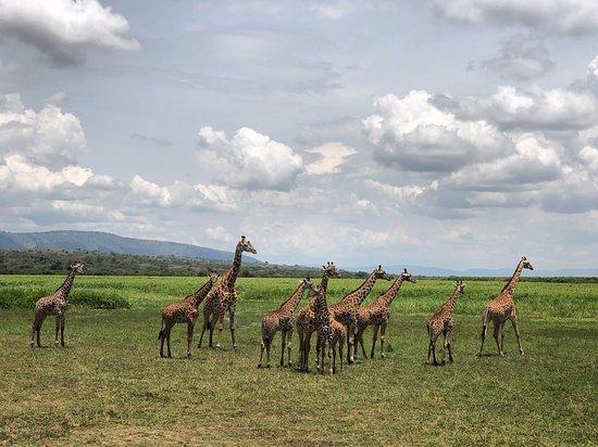 Lets Go Tours Rwanda