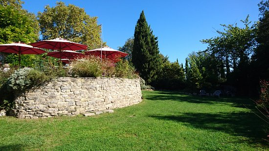 L'Auberge du Cedre: le parc