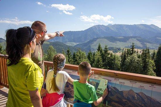 Zdiar, Slovakia: Summer in Bachledka