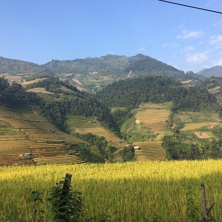 Yên Bái, Việt Nam: I like Mu Cang Chai's scenery  And love the atmosphere here  Really really love