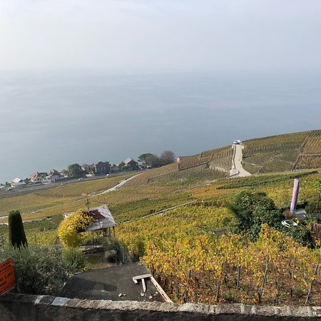 Grandvaux, Switzerland: photo9.jpg