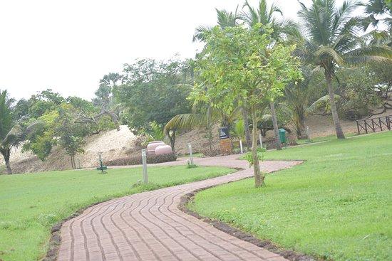 The Zuri White Sands Goa Resort & Casino : Garden and way to beach