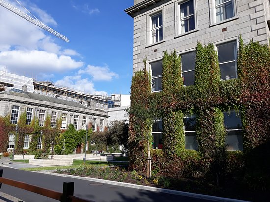 Trinity College Dublin: Trinity College, Dublin