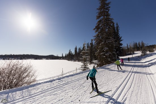 Kamloops, Canada: Starting at the Lake there are trails for every level of skier.