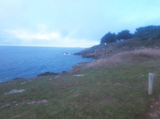 Port du Crouesty-billede