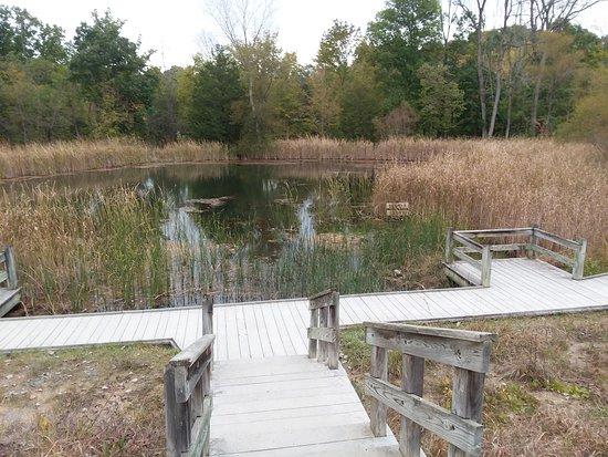 Tipp City, Οχάιο: Cedar Pond