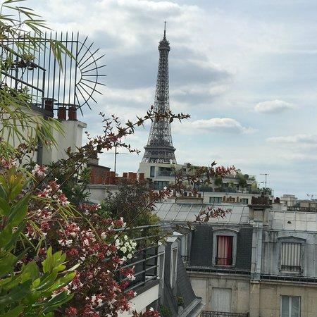 Perfect Paris Oasis