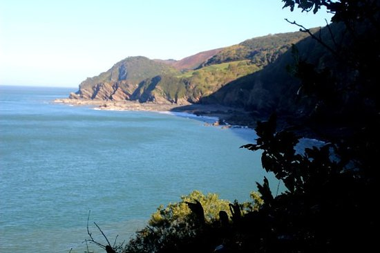 Lynton, UK : woody bay