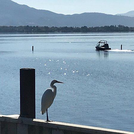 Nice, Kalifornia: photo2.jpg