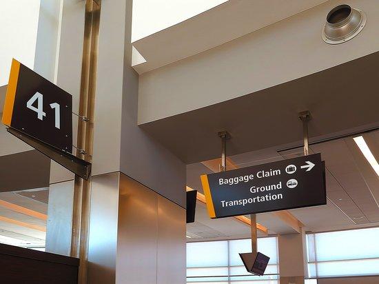 United Airlines: UA5451 SAN T2 Gate 41