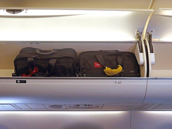 United Airlines: UA5451 SAN-LAX EMB-175 FC Seat 2D - Overhead Bins