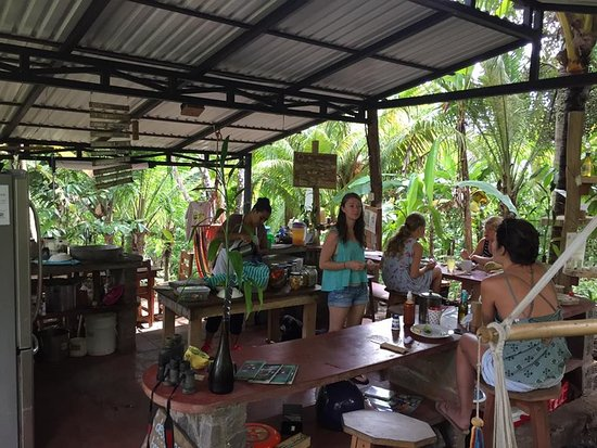 Balgue, Nicaragua: Breakfast, Selvista social time where you can get tips for the best things to do on ometepe