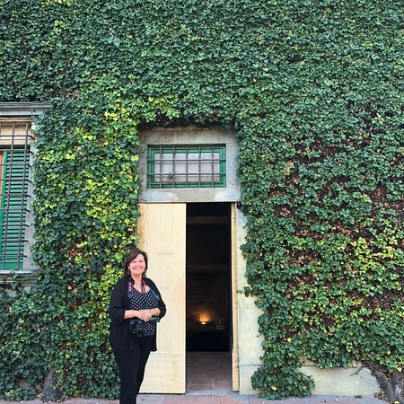 Small-Group Wine Tasting Experience in the Tuscan Countryside – fénykép