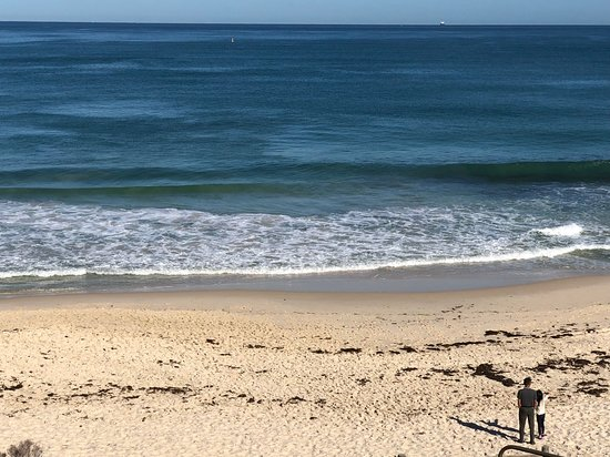 Cottesloe Beach : Perfect morning in perfect condition