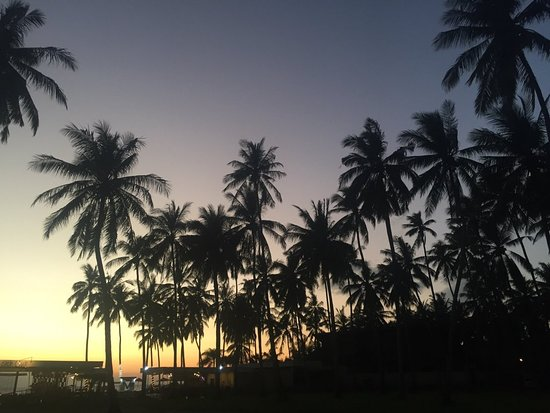 Warung Paradiso: Palm Trees Sunset