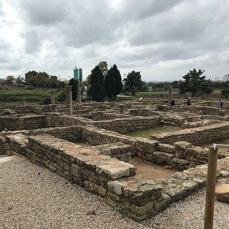 Ruines de la Ville Romanie de Pollentia: photo3.jpg