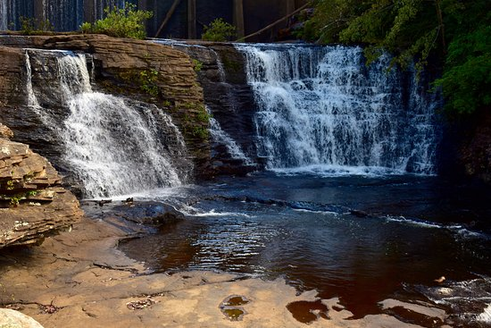 DeSoto State Park: Desoto Falls
