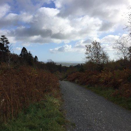 Life Adventure Centre Castlewellan Northern Ireland