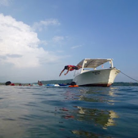 Promotional offer - 60 minutes Cruise, Nature & Discovery! Photo