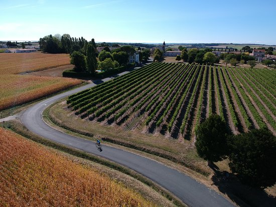 Épargnes, France: Come and cycle through the vineyards and quiet villages of Charente Maritime