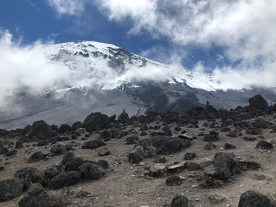 Pamoja Kilimanjaro & Safaris