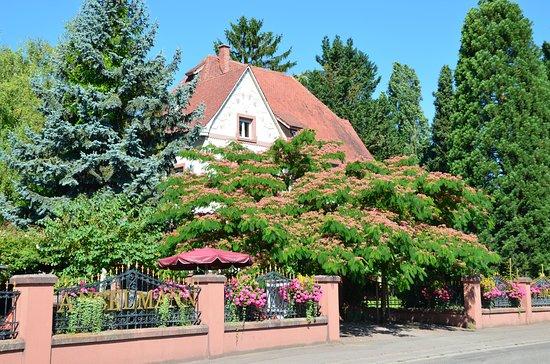 Edesheim, Germany: Weingut