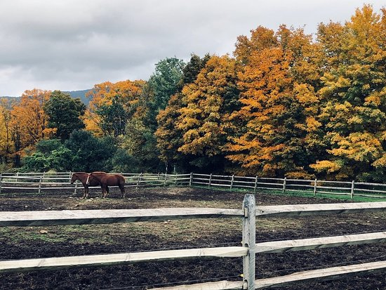 Chittenden, VT: Wonderful Riding