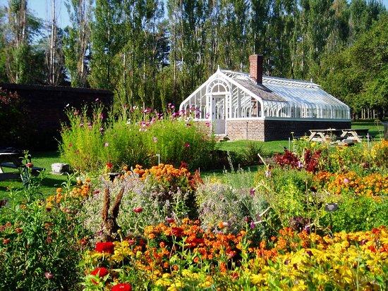 King's Garden