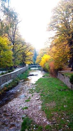 Виды реки Ольховки
