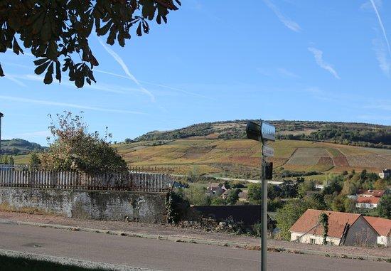 Saint-Desert, Frankrike: Jolie vue sur les coteaux de vignes