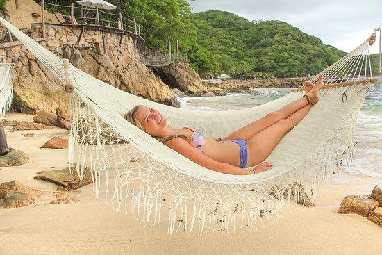Vallarta Adventures - Las Caletas Beach Hideaway