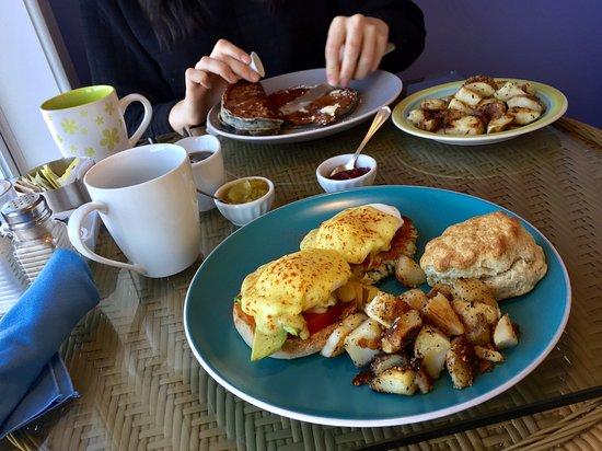 Wallace, Kanada: Blueberry pancakes, one fish cake eggs benny + one tomato + avocado eggs benny. Excellent!