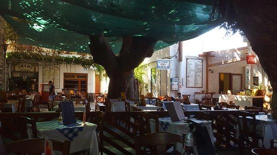 Mandraki, Grecja: Vista del restaurante