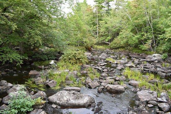 Camerons Brook Provincial Park