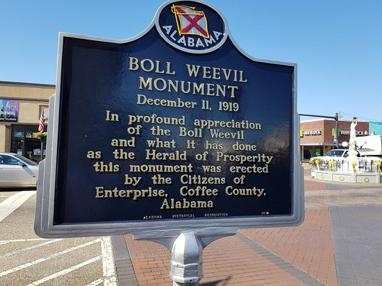 Boll Weevil Monument: 20181005_122113_large.jpg