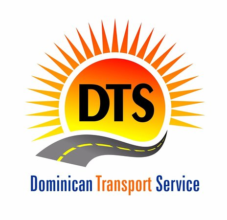 ‪Dominican Transport Service‬