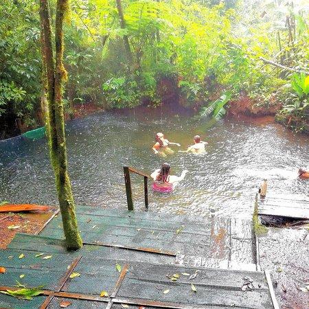 Guanacaste Nature Tours: Toku rainforest tour , hot springs