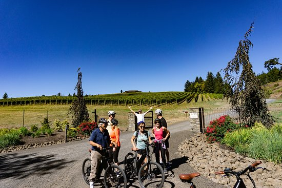 Newberg E Cycle Wine Tours